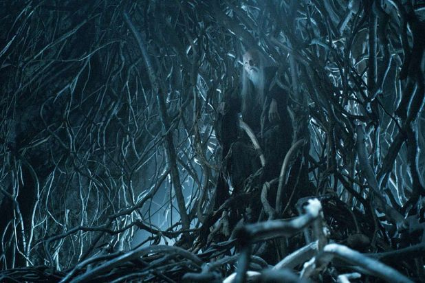 Last we saw ... Bran Stark made it to the white tree (or three-eyed raven).