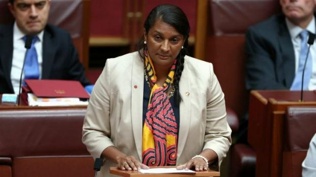 "Senator Nova Peris makes her Senate statement in which she said the allegations were ""baseless""."