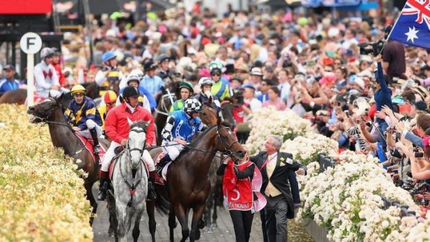 Araldo (left) ridden by Dwayne Dunn is spooked by a patron waving a flag as the horses return to scale after racing in ...