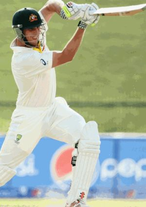 Ball played alongside WA star Mitchell Marsh during his cricketing days
