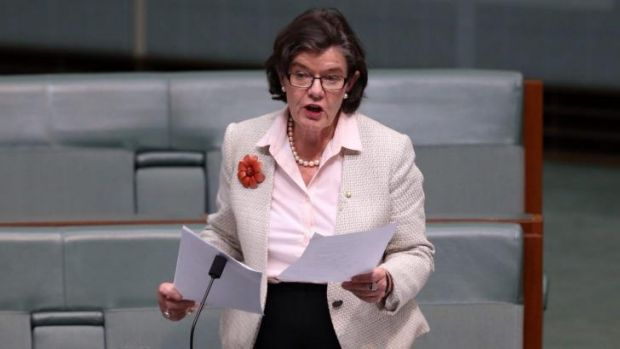 Independent Member for Indi Cathy McGowan said Australian Defence Force personnel had a right to be questioning the ...