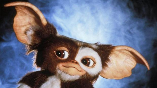 Supanova: The world's most lovable Mogwais, Gizmo