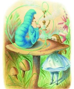 Alice is fascinated by the Caterpillar, from <i>The Complete Alice</i>. Illustrations coloured by Diz Wallis,  Macmillan ...