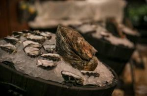 The Morrison Oyster Festival is a treat for seafood lovers.