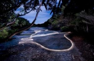 Aboriginal engraving series No. XI (Whale) Jibbon Head, Royal National Park NSW 2009. Light painting - photo taken at ...