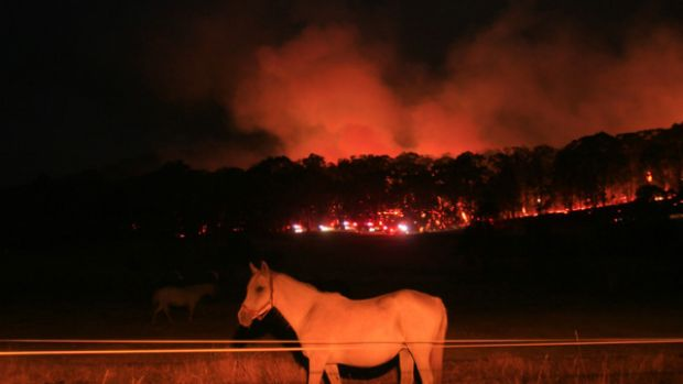 Fires continue to threaten farms and communities around Beechworth.