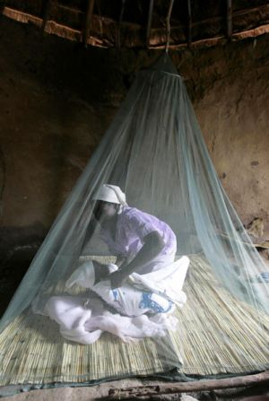 A Zimbabwean woman puts her child on a bed mounted with a insecticide-impregnated mosquito net in a hut in rural Gutu, ...