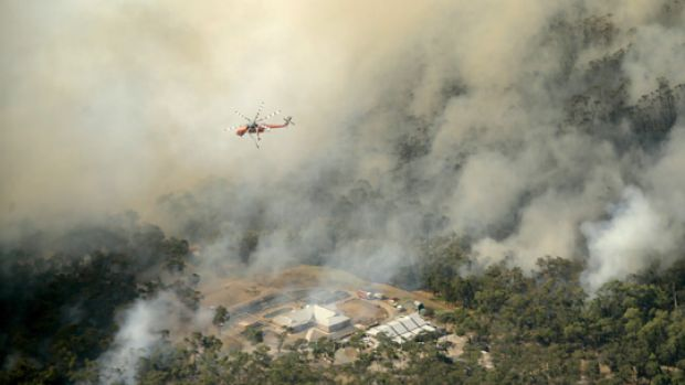 A water-bombing helicopter hovers over a Belgrave South property caught in the path of bushfires yesterday.