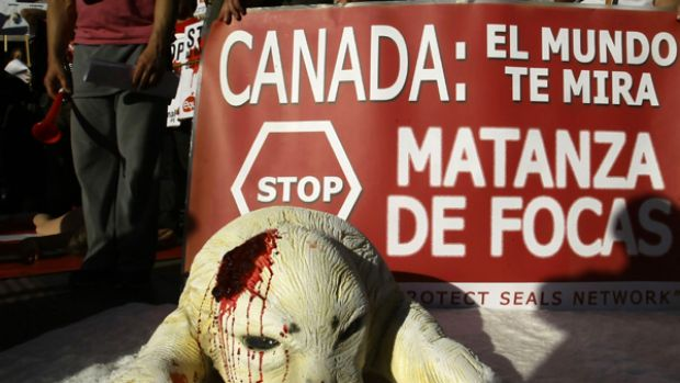 Animal rights activists protest against Canada's seal hunt in front of the Canadian embassy in Madrid.