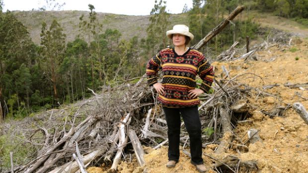 Friends of Gippsland Bush secretary Susie Zent  at College Creek in the Strzelecki Ranges, which was clear felled after ...