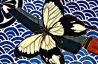 Detail from Still Life With Knife And Butterfly (2005) by Cressida Campbell.