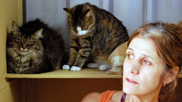 Roz Robinson fears the global credit crunch will harm more cats such as Ellie and  Maggie.