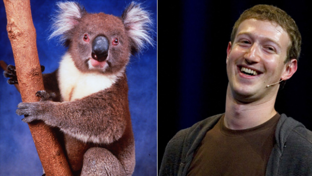 A new book set to be released next week makes the allegation that Facebook founder and CEO Mark Zuckerberg and ...