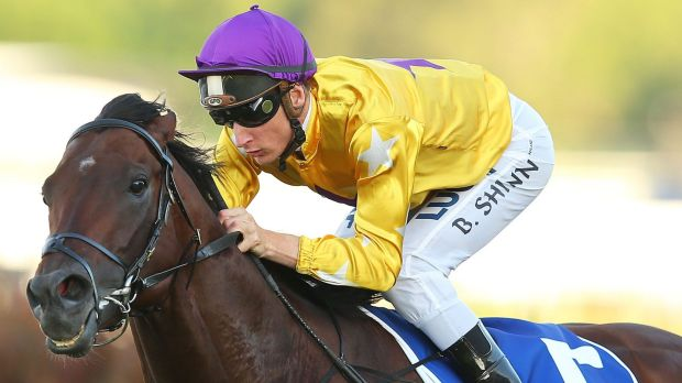 Top hope: Pornichet returns in the Warwick Stakes at Randwick on Saturday
