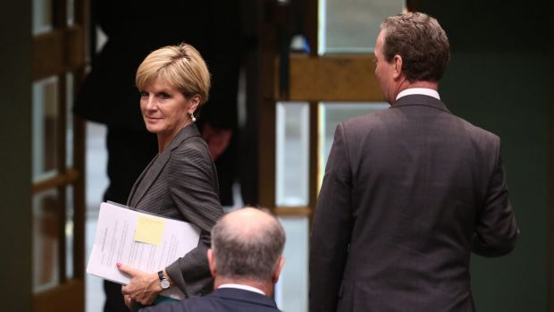 Foreign Minister Julie Bishop and Christopher Pyne leave the House of Representatives on Tuesday.