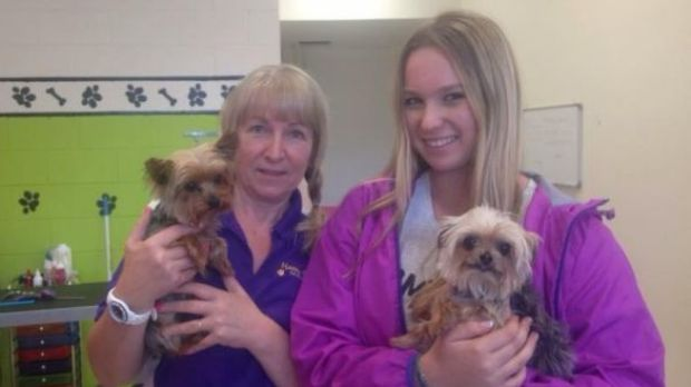 Pistol and Boo, with dog groomers Lianne and Ellie Kent, who unwittingly alerted authorities to their presence in the ...