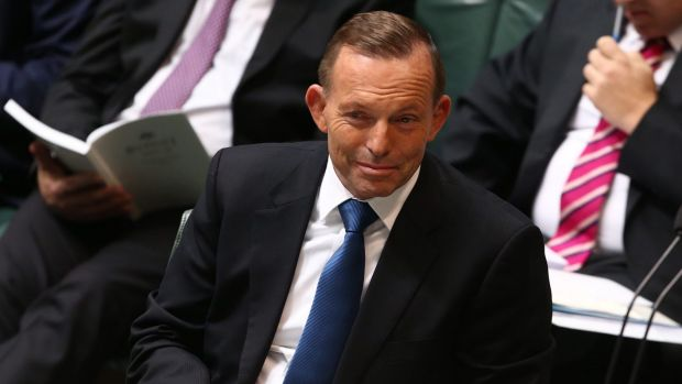Is Tony Abbott really that out of touch?