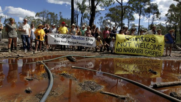 The CSG field in the Pilliga Forest , the target of continuing protests.