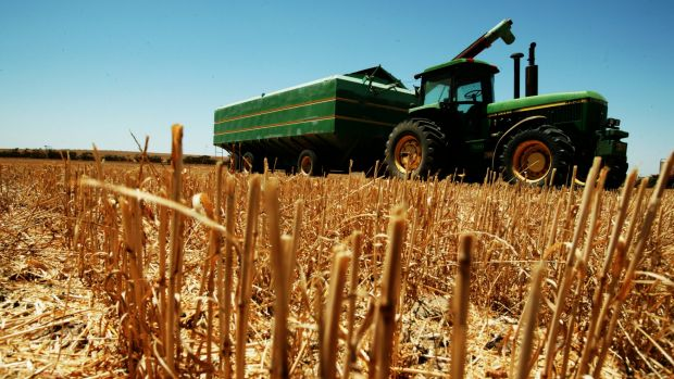 Australian Grains Champion has made a clever $1 billion pitch to WA growers.