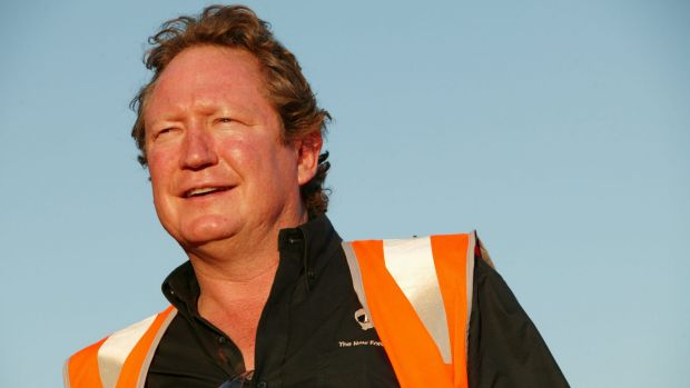 "Andrew ""Twiggy"" Forrest called for an inquiry into BHP and Rio increasing iron production."