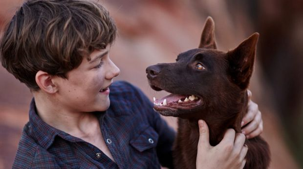 Levi Miller will play Mick, a boy living on a Pilbara cattle station in the 1960s.