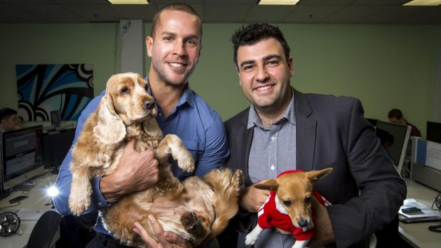 Ray Milidoni, general manager (right), and Nick Bell, managing director, with dogs belonging to staff at WME Group.
