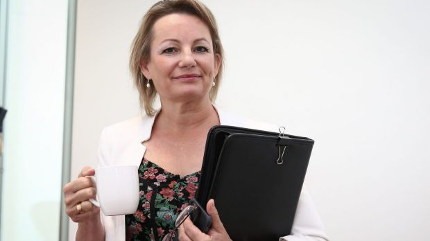 Health Minister Sussan Ley said the safety net changes were aimed at making the current system easier to access and ...