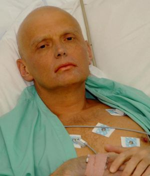 Former Russian security agent Alexander Litvinenko in his hospital bed at the University College Hospital in central ...