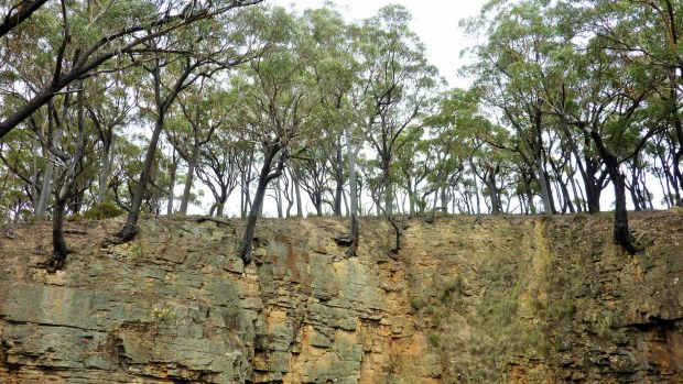 Trees cling precariously to the vertical walls around the top of the Big Hole.