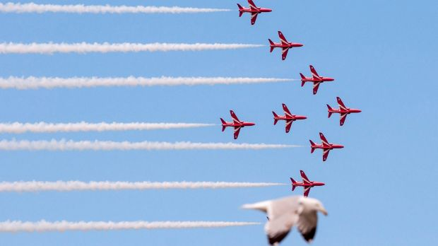 A seagull has become an internet sensation after taking the place of a Red Arrow at the Llandudno Air Show in a photo by ...