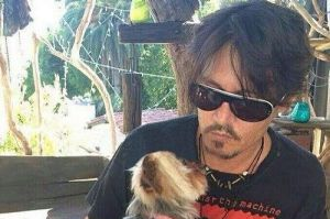 Johnny Depp with one of his Yorkshire terriers illegally brought to Australia.