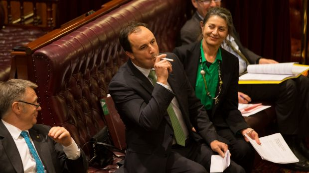 Greens MP Jeremy Buckingham, who used an e-cigarette in the NSW upper house, says Parliament should have gone further ...