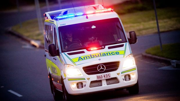 Two men were hospitalised after separate dog attack in Brisbane's north.