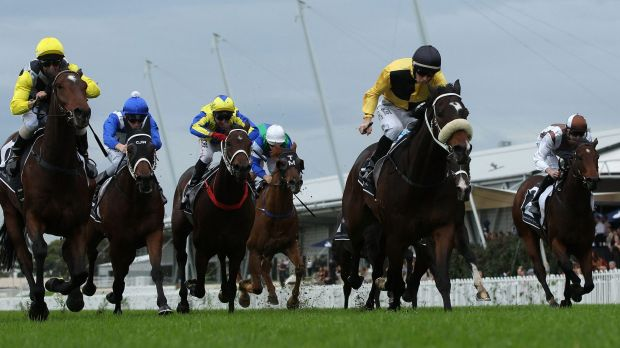 Top spot: Jason Collett (black cap) rides You'll Never to victory at Rosehill Gardens.