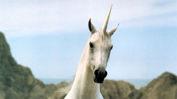 Australia is desperate for more unicorns in the startup sphere, but with great reward comes great risk.