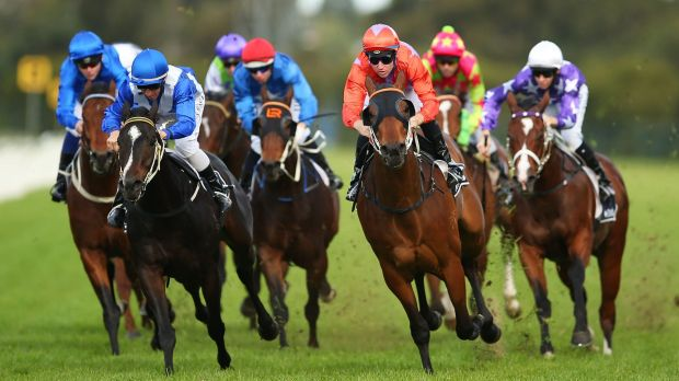 Welcomed win: Tommy Berry rides Lockroy (oranage silks) to victory in the second at Rosehill on Saturday.