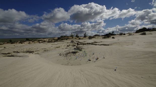 Sand dunes near Lake Mungo: Blue markers are where stone tools were found, green markers where animal food remains were ...