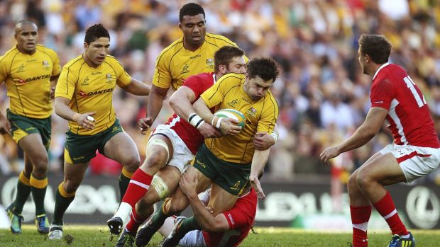 Back in action: The Wallabies will play at Allianz Stadium next year in the first Test match there since the Wales ...