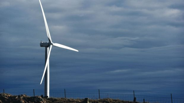 A wind turbine stands at the Capital Wind Farm, operated by Infigen Energy, in Bungendore, New South Wales. A wind farm ...