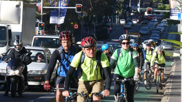 The College Street cycleway in Sydney,which is slated for removal.