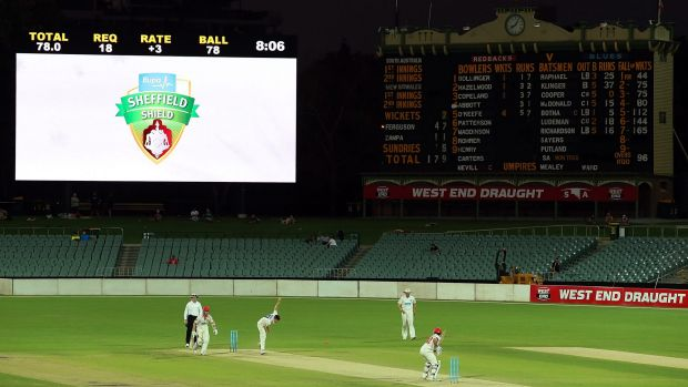 South Australia and New South Wales play in a day-night Sheffield Shield match at the Adelaide Oval last year.