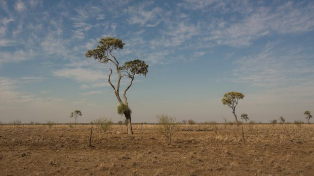 The Fraser Coast region had the lowest rainfall in its recorded history over the past 12 months, with farmers struggling ...