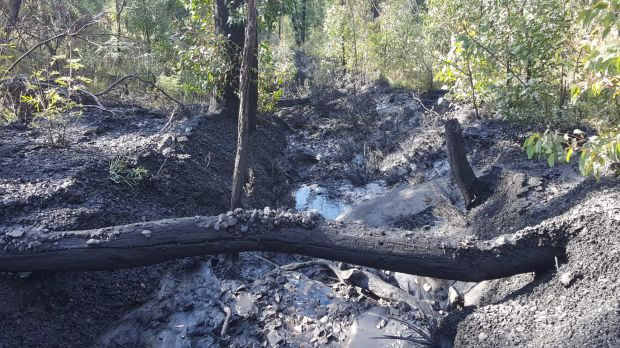 Polluted gully downstream of the Clarence colliery.