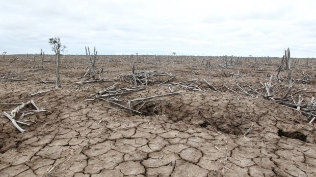 Drought conditions are expanding as the El Nino impact on Australia grows.