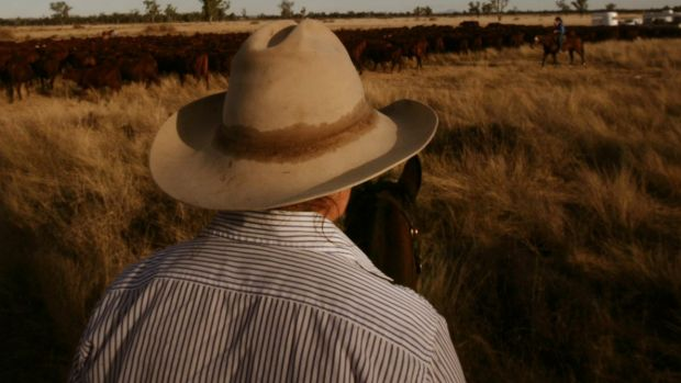 Some of S Kidman & Co's cattle stations are within the Woomera weapons testing range.