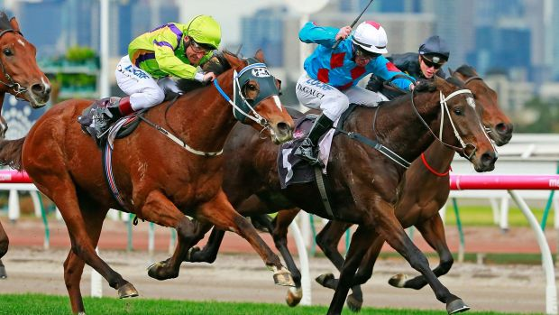 Darren Gauci on Automatic Choice  beats Damien Oliver on El Greco to win the Taj Rossi Series Final at Flemington on ...