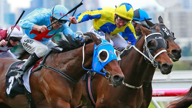 Damien Oliver (centre) wins the Winter Championship Final on Amovatio at Flemington on Saturday.