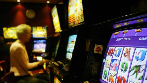 Poker machines are in the spotlight at the ACT Assembly inquiry.