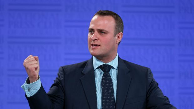 Human Rights Commissioner Tim Wilson will not seek Liberal preselection in Victoria.