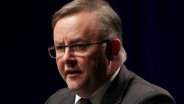 The proposed changes have prompted Labor frontbencher Anthony Albanese to consider switching from the neighbouring seat ...